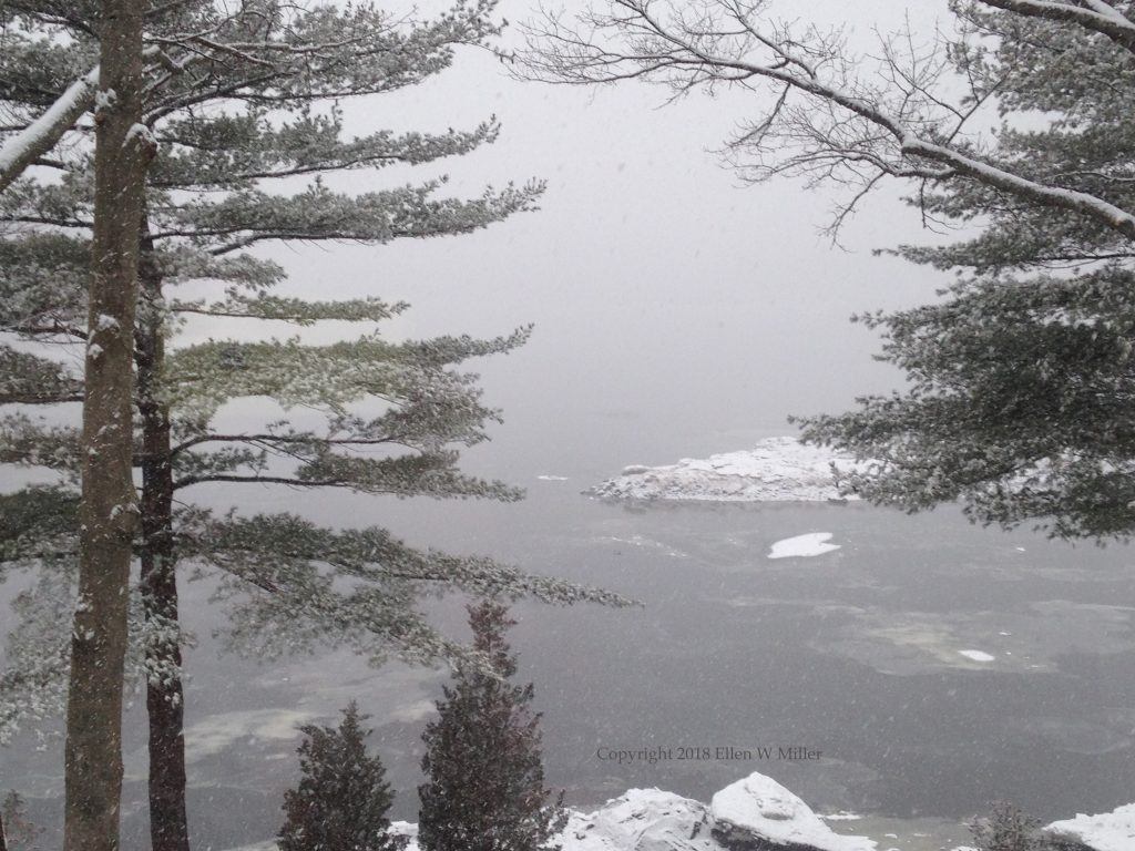 snow falling on the river